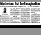 Mysterious fish