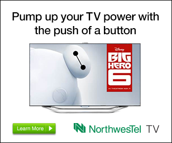 NWI_6079_Google_Display_Ad_BigHero6_P2