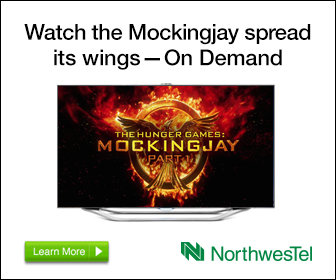 NWI_6079_GoogleDisplay_HungerGames_MockingJayPt1_WR