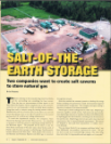 Salt of the earth storage